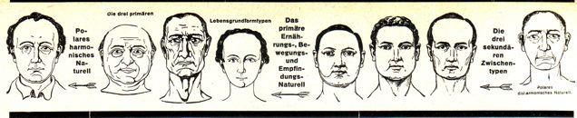 dgm048-bild-naturelle-zeile