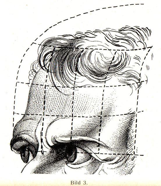 dgm049-bild-3-stirn