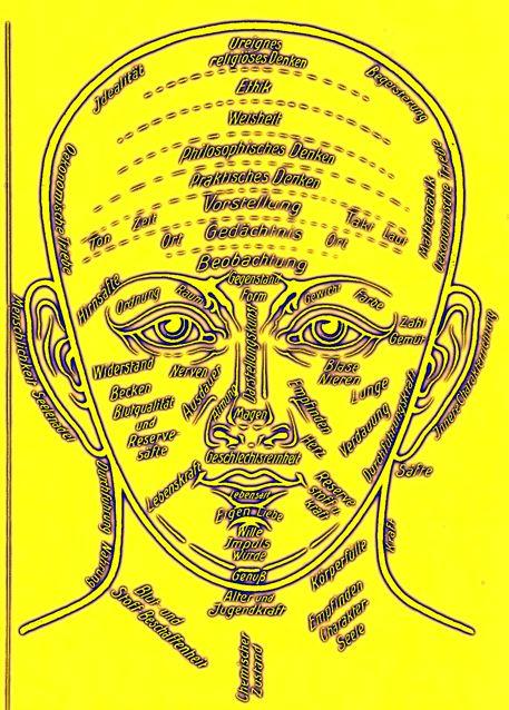 dgm052-bild-07-zuk-neo-gelb