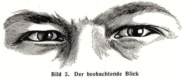 dgm055-bild03-blick-beob-mt