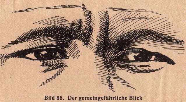 dgm057-bild66-gemein