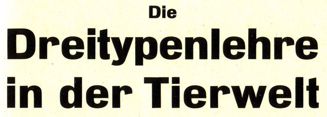 DgM060 DreiTypLehreTier