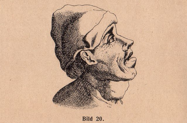 DgM064 Bi20 mT