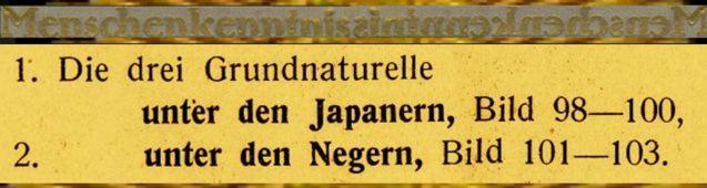 DgM067 JapNegTextMK